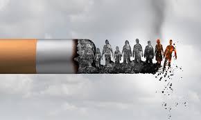 camara diputados tabaco